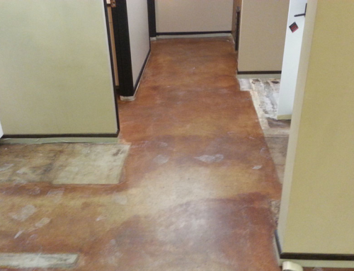 Business Lobby Concrete Floor Before